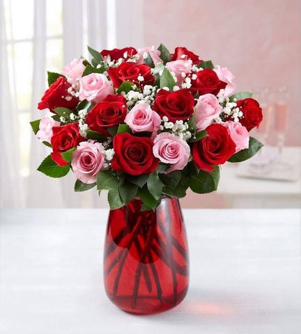 Red & Pink Roses, 6-24 Stems