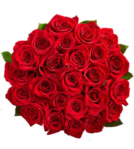 24 Red Roses for $38 Delivered.