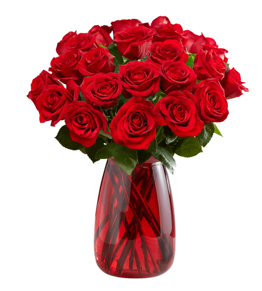 Red Roses, 24 Stems-OOS