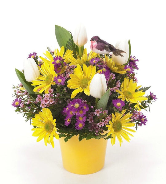 Cheerful Daisies and Tulips.