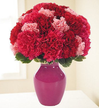 Pink and Red Carnations Surprise