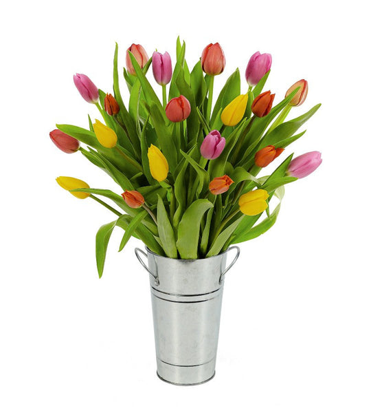 Birthday Spring Tulips - OOS