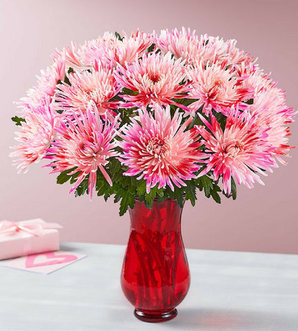 valentine's day flowers & gifts | florists, Ideas