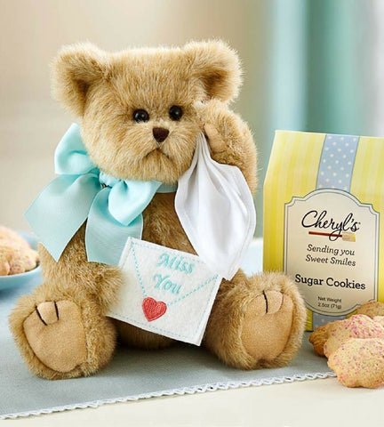 Stuffed Bear with Cookies