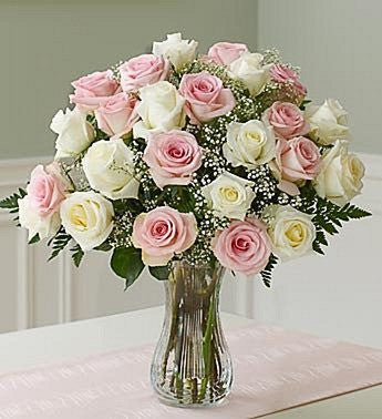 Luxurious Pink and White Roses