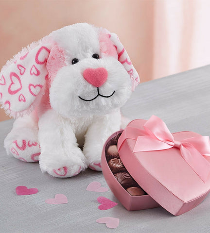 Stuffed Valentine Puppy with Chocolate