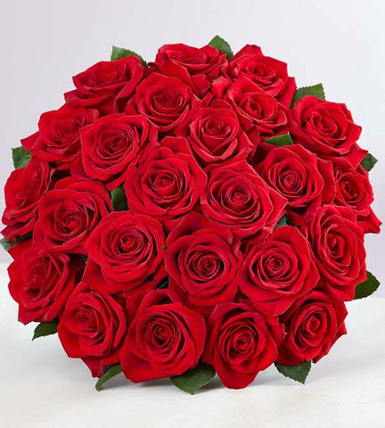 24 Red Roses.-OOS