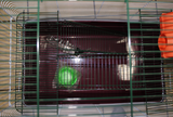 FERRET CAGE WITH HOUSE