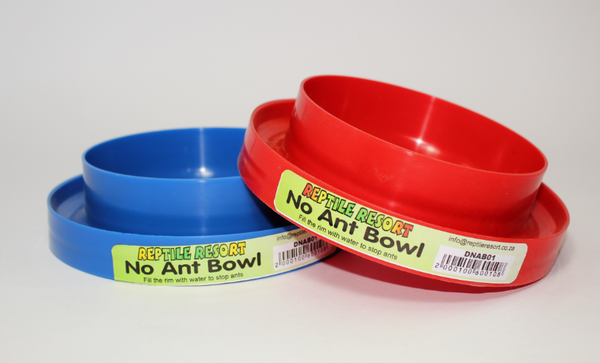 REPTILE RESORT NO ANT BOWL 17 x 4.5 CM  - Just Arrived