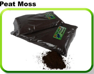 REPTILE RESORT PEAT MOSS 2L