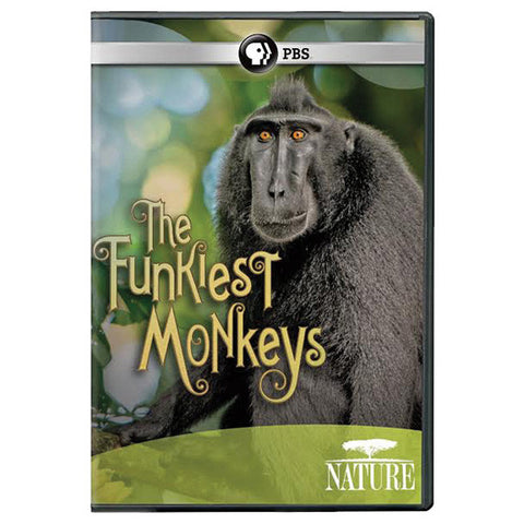 PBS Nature: Funkiest Monkeys DVD