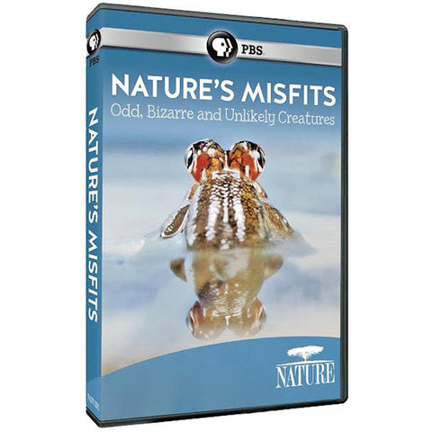 PBS Nature: Animal Misfits DVD