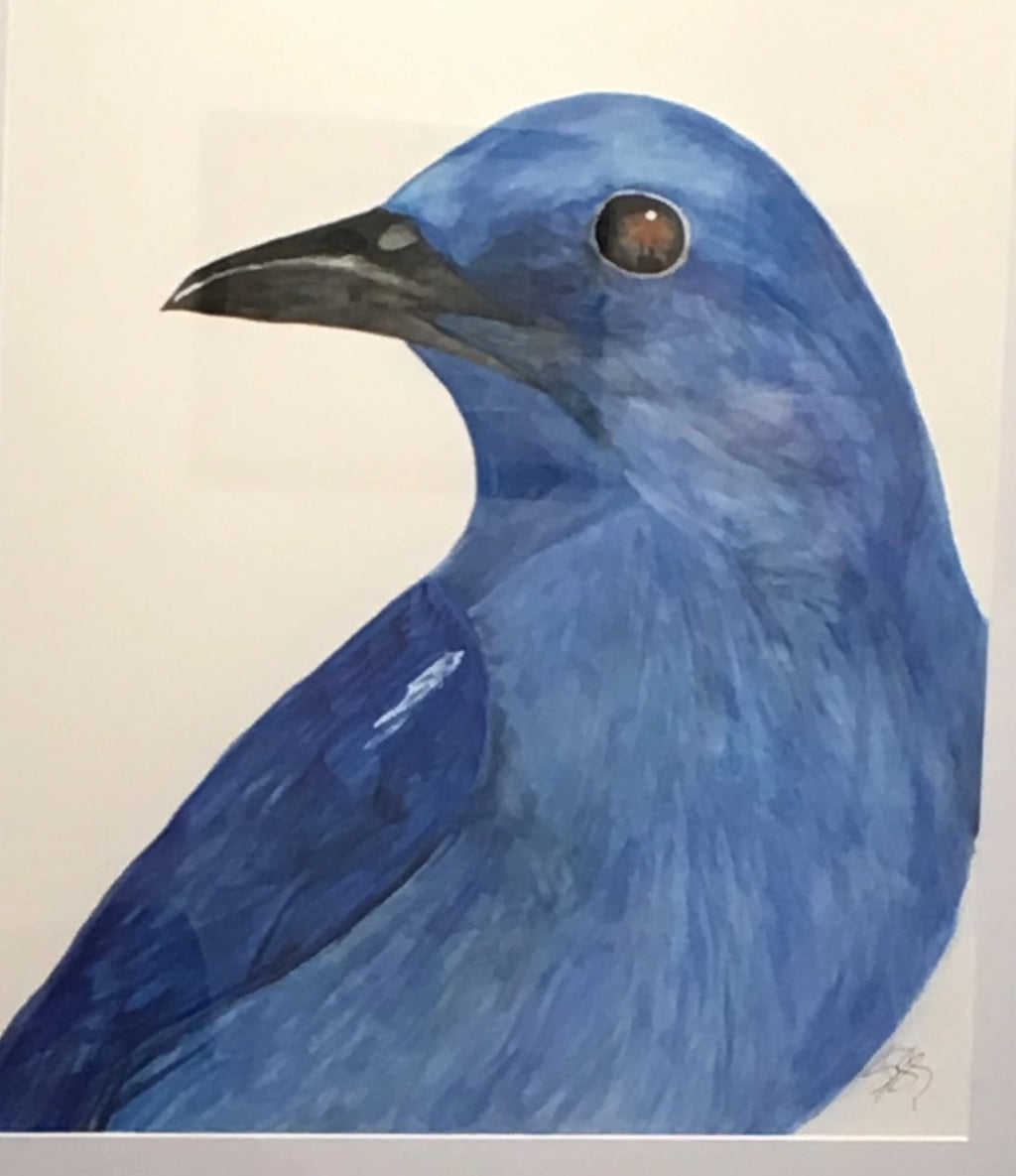 Mountain Bluebird Sees It All, 25x31""