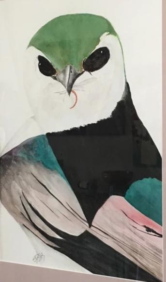 Violet-green Swallow with Lunch, 21x27""