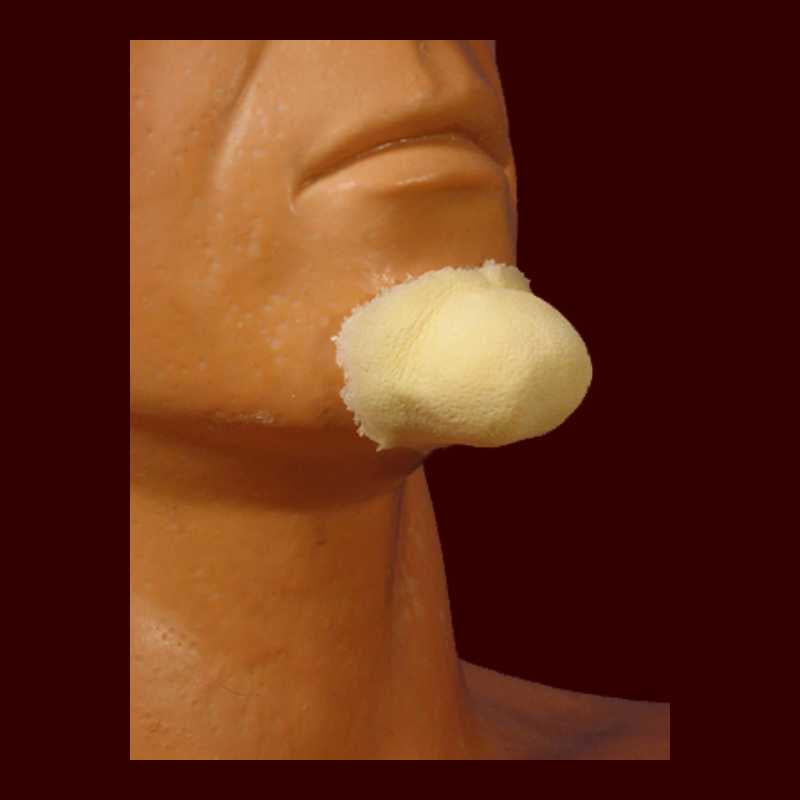 small witch chin makeup appliance prosthetic