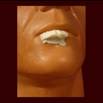 small split cut wound lip makeup appliance