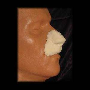 leonine lion nose appliance makeup halloween