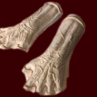 Veined zombie or monster hand foam appliances