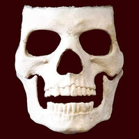 Skull makeup effects appliance mask