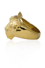 Load image into Gallery viewer, Puma Gold ring