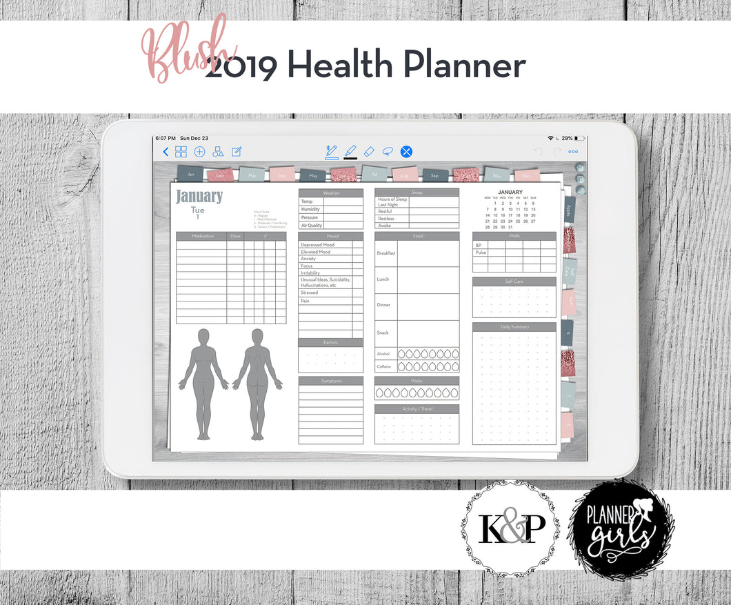 2019 Digital Mental Health Journal, Blush, Spoonie Journal, Health Journal, Chronic Illness Planner, Mood Tracker, Anxiety Journal