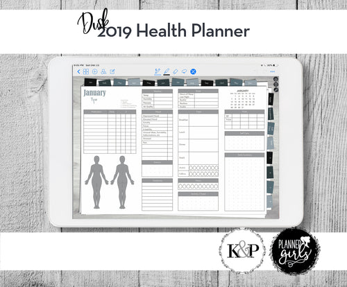 2019 Digital Mental Health Journal, Dusk, Spoonie Journal, Health Journal, Chronic Illness Planner, Mood Tracker, Anxiety Journal