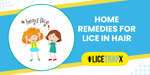 Home remedies for lice in hair