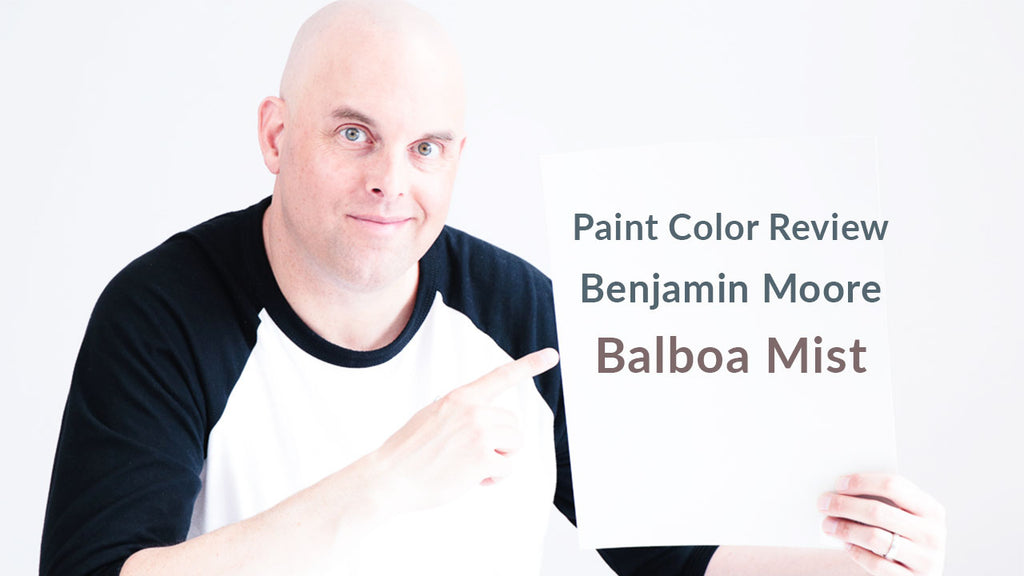 Benjamin Moore Balboa Mist Color Review
