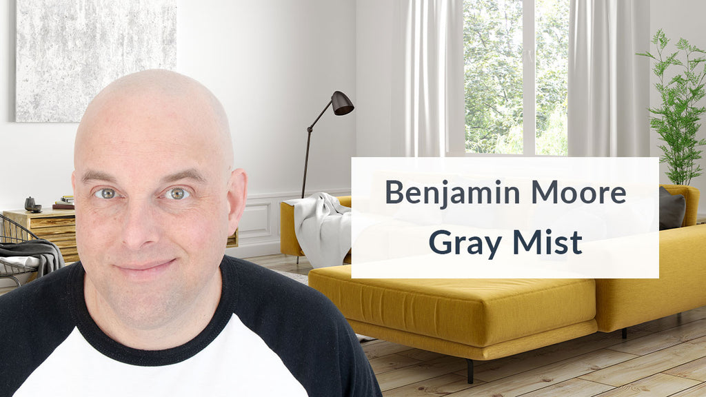 Benjamin Moore Gray Mist Color Review