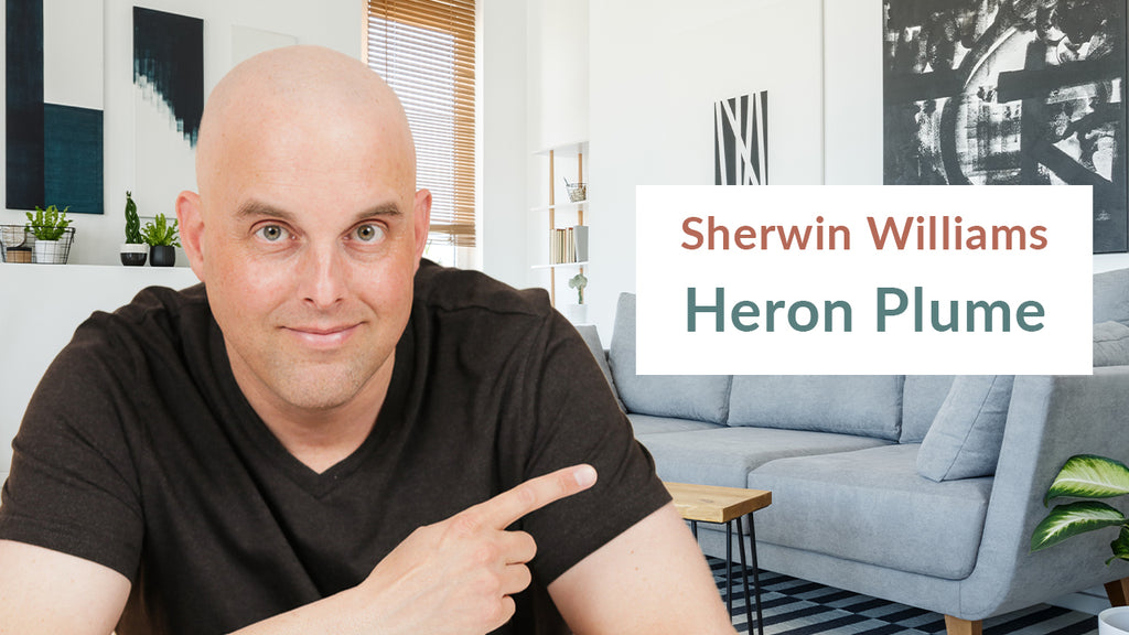 Sherwin Williams Heron Plume Color Review