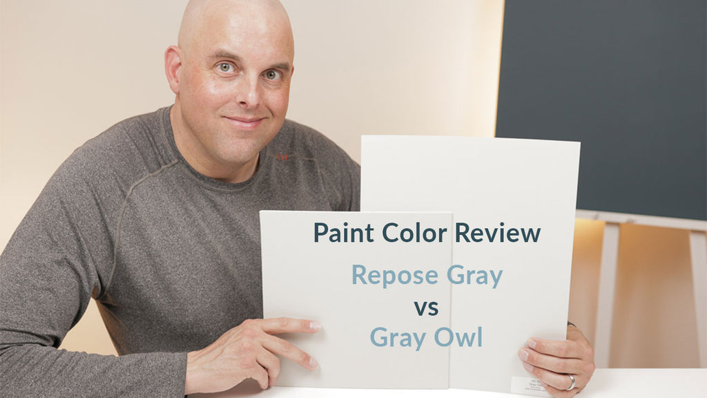 Sherwin Williams Repose Gray and Benjamin Gray Owl Color Review