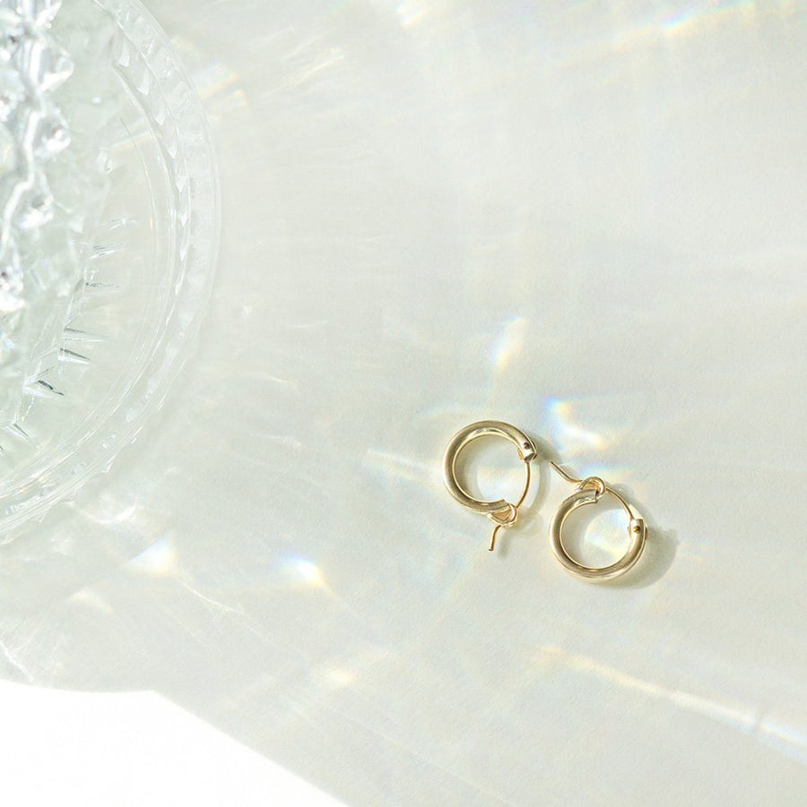 Thick Euro Gold Hoops - Dainty & Co. Jewelry