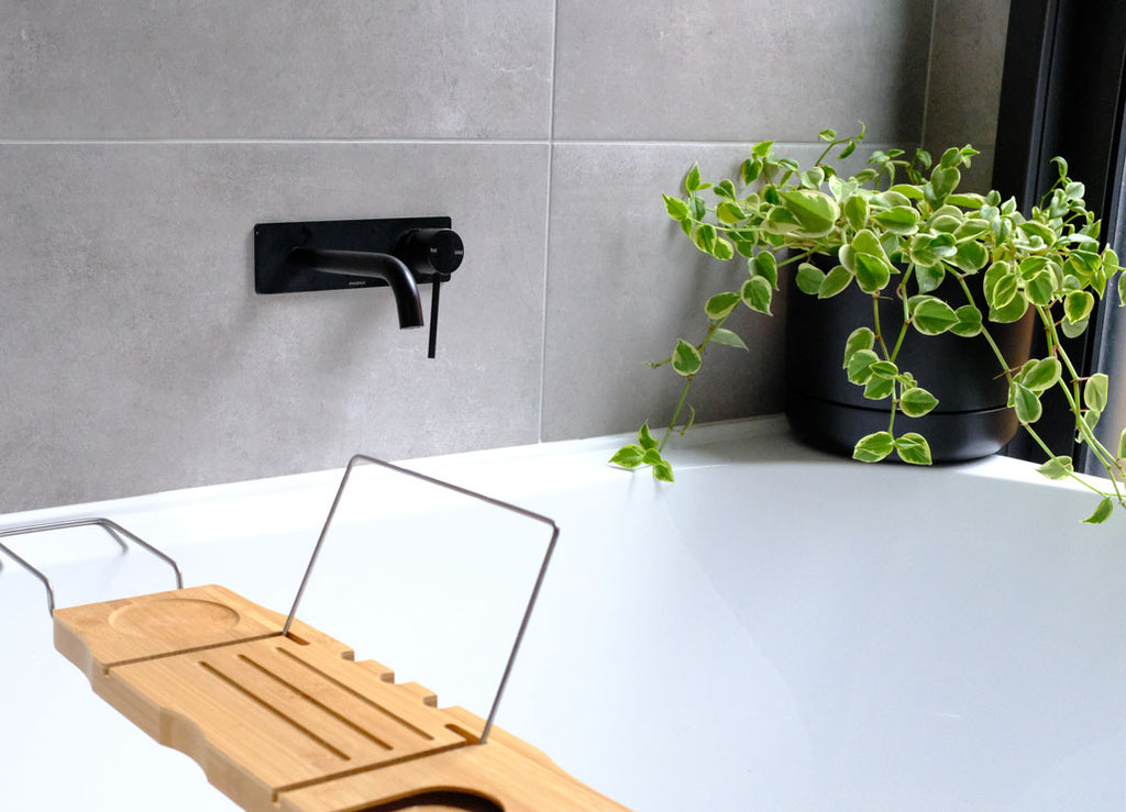 Shower In Style 8 Best Plants For The Bathroom In 2020 Plants In A Box