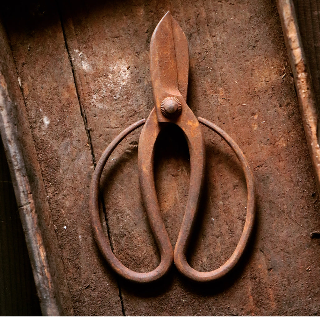 Japanese flowers scissors since 160 years ago