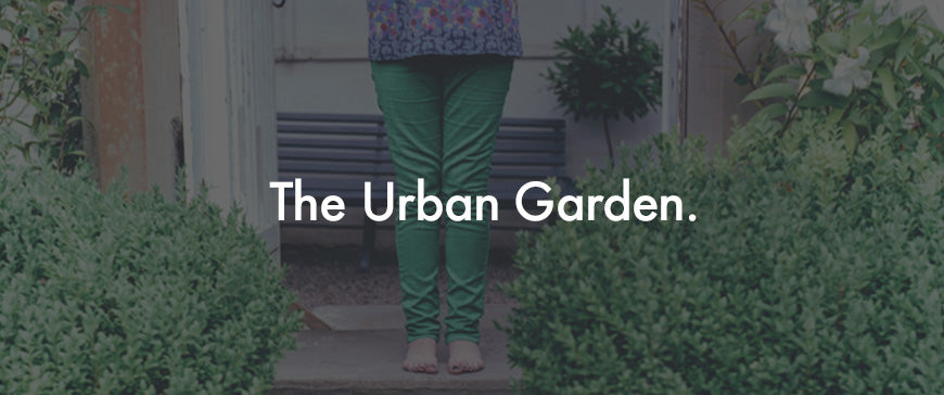 The Urban Garden Plants