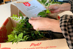 Box of Murraya hand picked delivered to your door