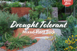 Drought Tolerant Plant Pack