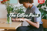 The Office Pack - 85mm
