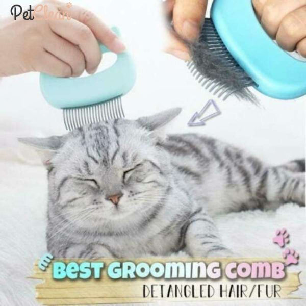 Pet Massage Comb