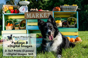 Farmer's Market Mini Session Package B +Digital Images