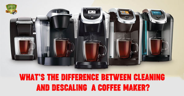 What's The Difference Between Cleaning and Descaling  A Coffee Maker?