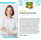 Sollo Brain Power Organic Green Tea Pods For Keurig