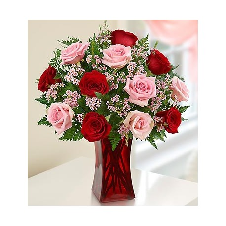 Dozen Red and Pink Roses Mix