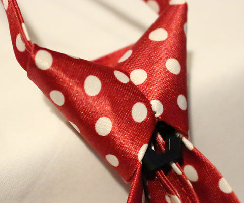Red Dotted Kids Zipper Tie with Large White Dots
