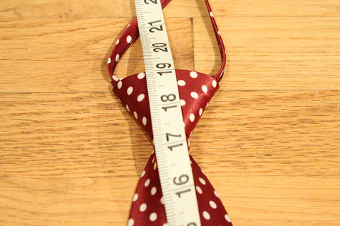 Red Dotted Zipper Tie with White Dots