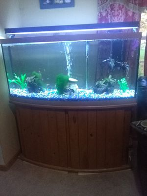 5 Feet used aquarium with cabin