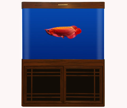 RS-100HF AQUARIUM SET (1050X380X900 MM)
