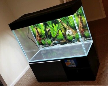 3 Feet Aquarium Tank (10mm Glass)  Select Sizes under below options