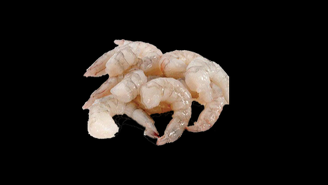 Freezed Shrimps pack of 12 No's