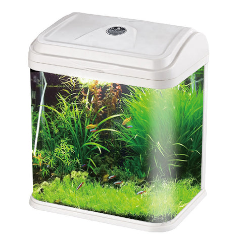 RS230EL AQUARIUM ONLY (SIZE 23X17X28 CM)